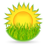 Sun and grass. icon. Vector illustration Royalty Free Stock Photos