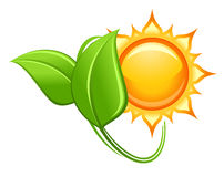 Sun and green leaves Royalty Free Stock Photos