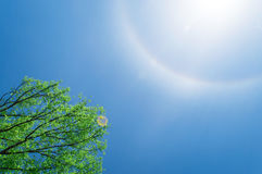 Sun halo Stock Photography