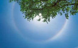 Sun halo Royalty Free Stock Photos
