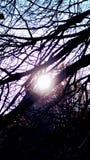 Sun halo stock image