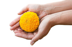Sun in the hands Royalty Free Stock Photography