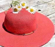 Red ladies hat with daisies on a rustic background. Sun hat with flowers on a wood background Stock Photos