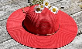 Red ladies hat with daisies on a rustic background. Sun hat with flowers on a wood background Royalty Free Stock Image