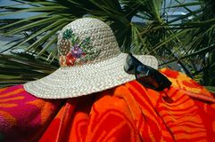 Sun Hat and Palm Tree Stock Photo