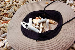 Sun hat and shells on tropical coral beach. Stock Photos