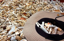 Sun hat and shells on tropical coral beach. Royalty Free Stock Photos