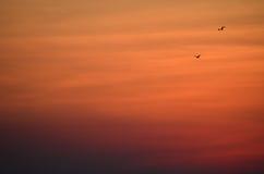 The Sun-het Westen Royalty-vrije Stock Foto
