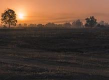 Sun hinter dem Nebel und dem Nebel Lizenzfreies Stockfoto