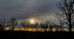Sun on the horizont in city of Pakrac. With dark trees in winter Royalty Free Stock Photography