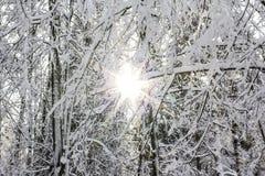 Sun i śnieg Zdjęcia Royalty Free