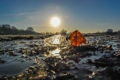 Sun&Ice Images libres de droits