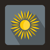 Sun icon in flat style. On a gray background Royalty Free Stock Photography