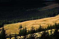 The sun illuminates the Carpathian mountain stock photography