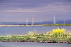 The sun illuminates the wild mustard growing on a levee and the electricity towers on a cloudy and stormy day, Sunnyvale, San. Francisco bay area, California stock photography