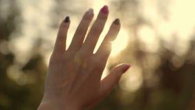 Sun irradia através de uma mão do ` s da mulher filme