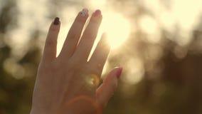 Sun irradia através de uma mão do ` s da mulher video estoque