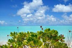 Sun Island-2 Fotografia Stock