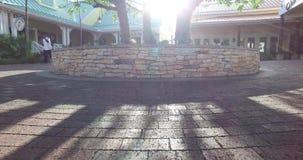 Sun ist zwischen Treetops auf dem Bürgersteig, Bahamas glänzend stock video