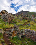 Sun Juan Mountain Trail Arkivbilder