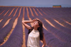 Sun kissing in lavender field Stock Photos