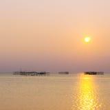 Sun l'après-midi Photo stock