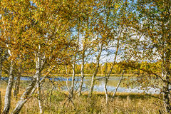 The Sun Lake autumn scenery royalty free stock images