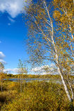 The Sun Lake autumn scenery Stock Images
