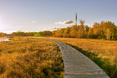 Sun Lake and plank path in the autumn Stock Photography