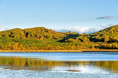 Sun Lake and White Birch in the autumn Stock Images