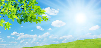 Sun lawn Royalty Free Stock Photography