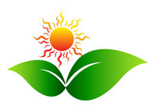 Sun with leaf. Illustration of sun with leaf design isolated on white background Stock Photo