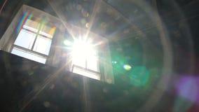 Sun-Licht und Gebäude, Natur, stock video