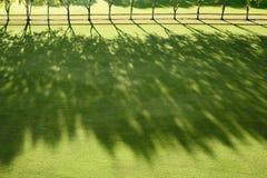 Sun-Lichtstrahlen auf einem Pologebiet Stockbilder