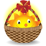 The sun lies in a gift basket. Vector illustration Royalty Free Stock Photos