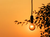 Sun-Light-Bulb. A setting sun glows through a light bulb, seeming as if the light bulb is glowing while lighting up the entire sky behind it Stock Photo