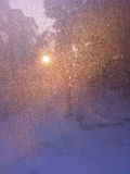 Sun light on a frozen window Stock Photo