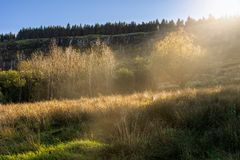 Sun rays highlighting several trees and meadow, mountain hill with waterfall in background, autumn landscape royalty free stock photography