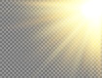 Free Sun Light On Transparent Background. Golden Glowing Light Effect. Sunlight Lens Flash. Magic Banner. Sunshine With Rays Royalty Free Stock Images - 183287289