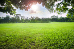 Sun light over sky in beautiful green grass field of public park Royalty Free Stock Photos