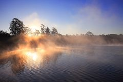 Sun light through tree forest in misty morning Kandawgyi Lake, Myanmar stock image