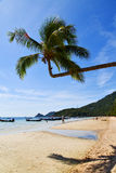 Sun Ligt Asia In The Kho Tao Bay Beach Rocks Boat Thail Royalty Free Stock Images