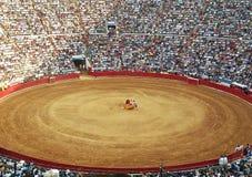 Sun lit corrida scenery in Madrid. Killing bulls in arena Royalty Free Stock Images