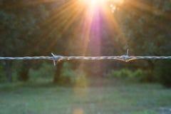 Sun-Lit-Stacheldraht Stockfotografie