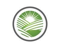 Sun Logo Icon Vector Template vector illustration