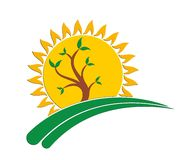 Sun logo with a tree. Royalty Free Stock Images