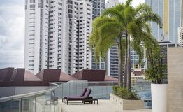 Sun lounger on a deck of a highrise. With some highrises in the background and some palm trees in the foreground. Recorded in Panama City Royalty Free Stock Photography