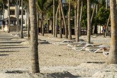 Sun lounger between palms tropical beach oman salalah souly bay  Stock Photos