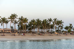 Sun lounger between palms tropical beach oman salalah souly bay 29 Royalty Free Stock Photography