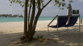 Sun loungers on the beautiful tropical beach. Maldives. 4k stock footage
